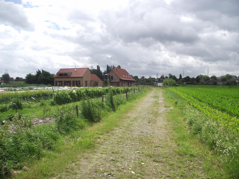 met dank aan de Plukboerderij Schelle - www.plukboerderij.be